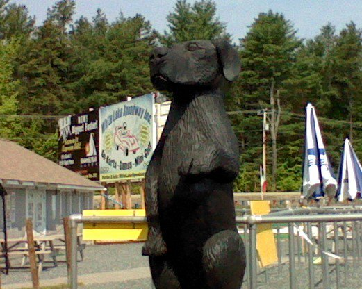 "Welcomed by our mascot (black-lab) and his 54"" tall paw.  (Minimum height required to drive go-karts @ White Lake Speedway Inc.)"